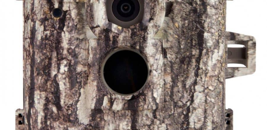 Moultrie D-555i Trail Camera Review