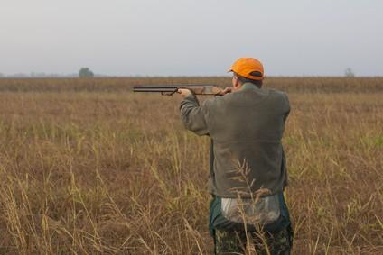 Hunter aims double barreled shotgun