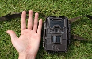Bushnell trail camera reviews