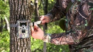Mount A Trail Camera