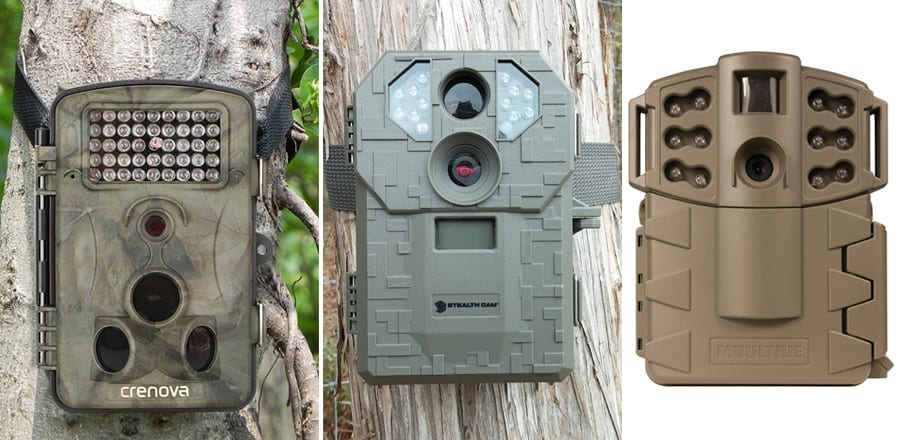 Best Cheap Trail Cameras – 2017 Reviews and Comparison
