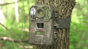 trail camera for hunting deer
