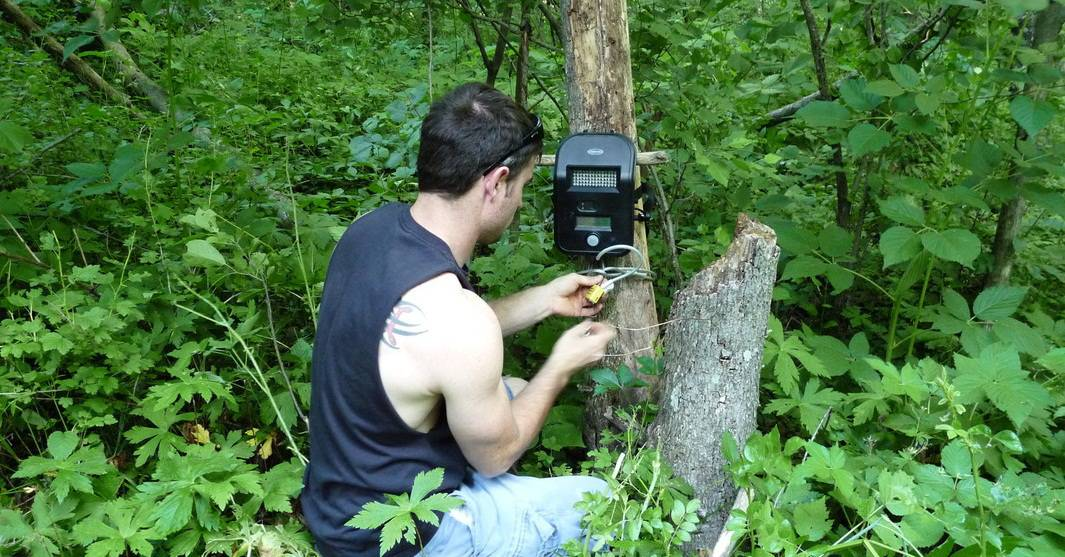 10 trail camera tips